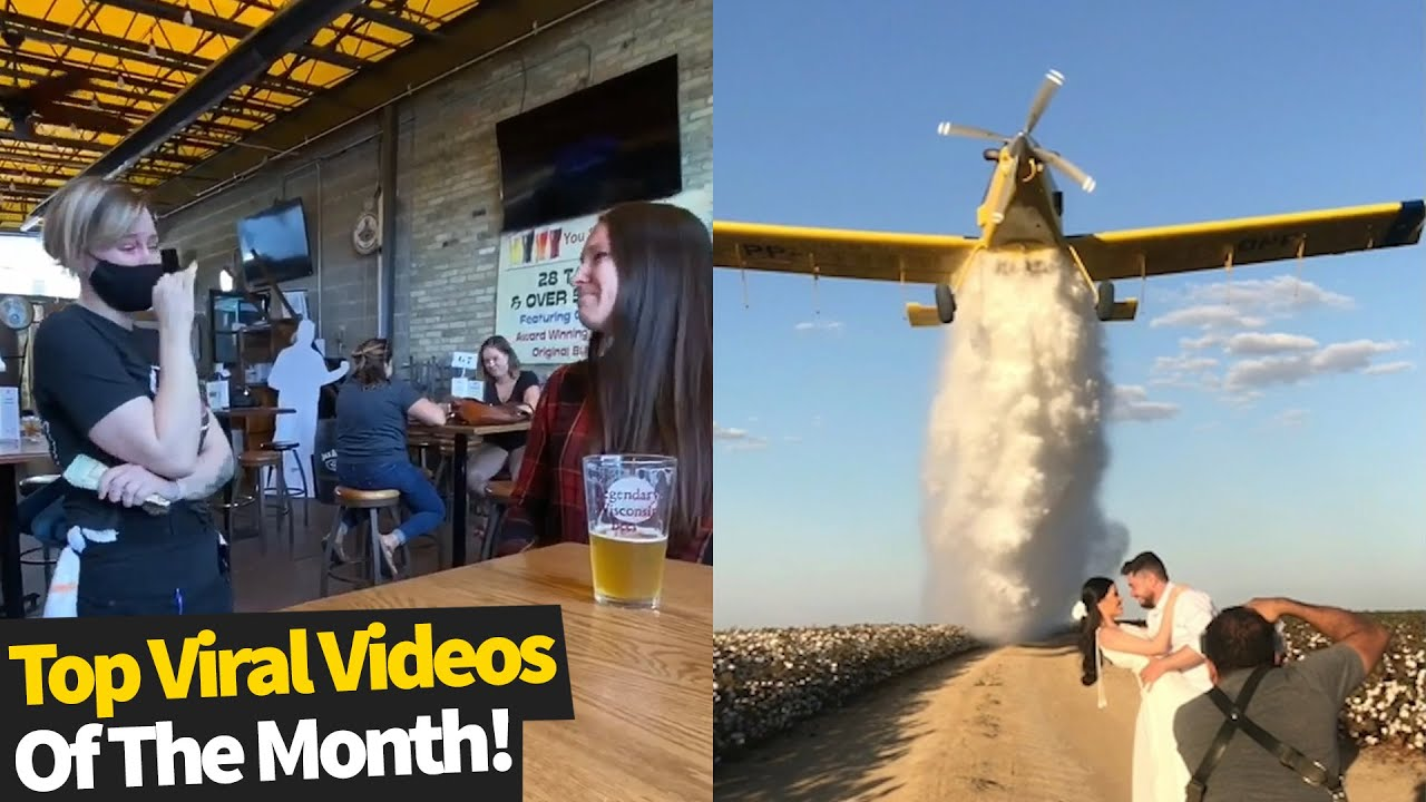 Top 50 Best Viral Videos Of The Month – October 2020